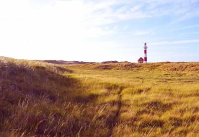 België aan zee: Tips en uitstapjes voor de Vlaamse kust