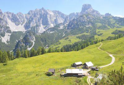 Oostenrijk: Alpenweides en wandelen in de bergen van SalzburgerLand